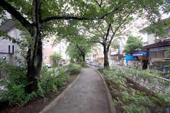 シェアハウス周辺の緑道。(2012-05-28,共用部,ENVIRONMENT,1F)