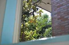 廊下の窓からの景色。(2014-03-31,共用部,OTHER,2F)