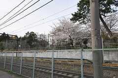 駅の近くから、東大駒場キャンパスの桜が見えます。(2014-03-31,共用部,ENVIRONMENT,1F)