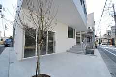 店舗前にはテラス席も設けるそう。シンボルツリーはハナミズキ。(2014-03-25,共用部,OTHER,1F)