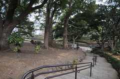 駒沢オリンピック公園内は散歩コースが色々。(2014-02-03,共用部,ENVIRONMENT,1F)