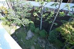 ベランダから見た庭。(203号室)(2014-03-14,専有部,ROOM,2F)