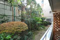 マンションの庭には緑がいっぱい。(2013-12-02,共用部,LIVINGROOM,1F)