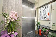 エレベーターの様子。(2010-02-05,共用部,OTHER,1F)
