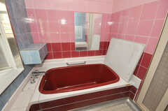 バスルームの様子。(2010-02-05,共用部,BATH,5F)