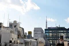 ベランダからは東京タワーも見えます。(2010-02-05,共用部,OTHER,5F)