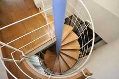 螺旋階段を上から見るとこんな感じ。(2009-05-29,共用部,OTHER,8F)