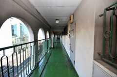廊下の様子。古いが味のある建物。(2009-02-06,共用部,OTHER,8F)