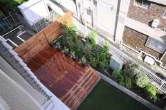 庭を見ると、こんな景色。(2010-05-27,共用部,OTHER,4F)
