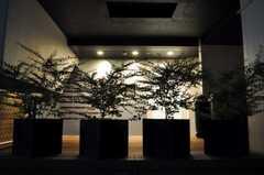 エントランスは夜になるとライトアップされます。(2010-07-22,共用部,OUTLOOK,1F)