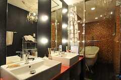 洗面台の様子。鏡の周りに電球が付いています。(2013-02-21,共用部,OTHER,3F)