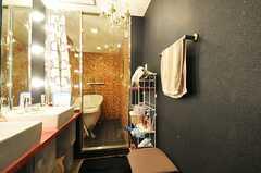 洗面台の奥に、バスルームがあります。(2013-02-21,共用部,BATH,3F)