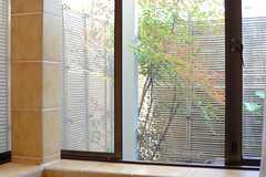窓の外は眺めの良いお庭です。(2013-05-09,共用部,BATH,1F)