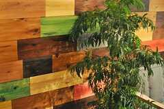 カラフルな壁板は、事業者さんがD.I.Y.したのだそう。(2013-05-24,共用部,LIVINGROOM,1F)