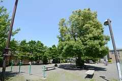 シェアハウスの近くにある公園の様子。(2013-05-24,共用部,ENVIRONMENT,1F)