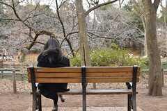 井の頭公園の様子3。(2017-02-26,共用部,ENVIRONMENT,1F)