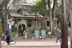 井の頭公園内のブルースカイコーヒーの様子。(2017-02-26,共用部,ENVIRONMENT,1F)