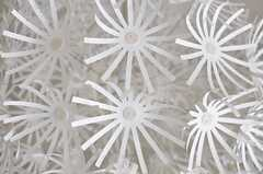 照明は、タンポポの綿毛のよう。(2012-08-03,共用部,OTHER,2F)