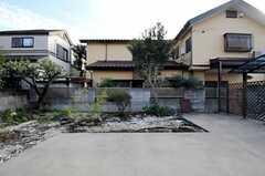 縁側からみた庭の様子。(2011-11-24,共用部,LIVINGROOM,1F)