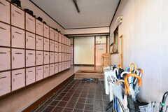 玄関から見た内部の様子。左手が靴箱です。(2019-10-30,周辺環境,ENTRANCE,1F)