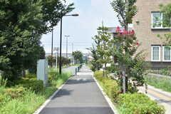 シェアハウス周辺の様子。目の前の通りは、自転車道と歩道で分かれています。(2019-07-30,共用部,ENVIRONMENT,1F)