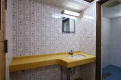 洗面台の様子。奥のシャワールームも使用可能です。(2017-07-24,共用部,WASHSTAND,)