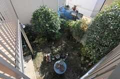 ベランダから見た庭の様子。(201号室)(2013-11-26,専有部,ROOM,2F)