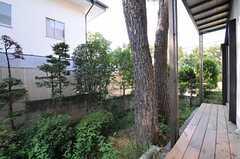 濡れ縁は管理人室前へと繋がっています。庭には立派な松の木が。(2011-10-27,共用部,OTHER,1F)