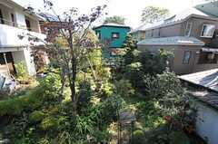 窓からの景色。(203号室)(2011-10-27,専有部,ROOM,2F)