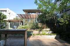 菜園の様子2。ウッドデッキが敷かれています。(2011-10-27,共用部,OTHER,1F)