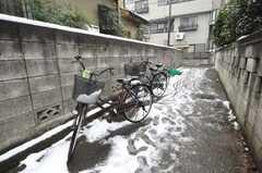 自転車置場の様子。(2010-02-02,共用部,GARAGE,2F)