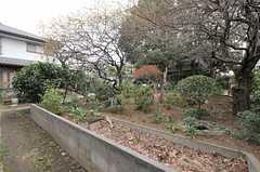 庭の様子2。(2013-03-29,共用部,OTHER,1F)