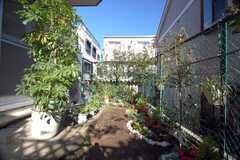 庭にダイレクトアクセス!(103号室)(2008-12-01,共用部,OTHER,1F)