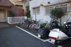 自転車、バイク置き場の様子。(2009-01-08,共用部,GARAGE,1F)