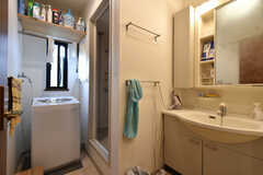 洗濯機と洗面台の様子。洗濯機脇がシャワールームです。(2017-11-28,共用部,WASHSTAND,2F)