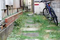 アプローチの様子。自転車はこちらに。(2009-11-20,共用部,GARAGE,1F)