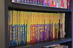 廊下に設置された本棚。地球の歩き方が並んでいます。(2012-01-24,共用部,OTHER,1F)