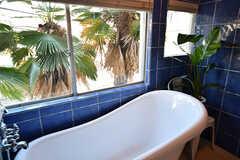 バスルームの様子3。窓からはヤシの木が見えます。(2017-07-10,共用部,BATH,2F)