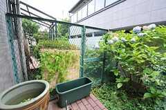 庭の様子。大きな鉢ではメダカが泳いでいます。(101号室)(2011-07-20,専有部,ROOM,1F)