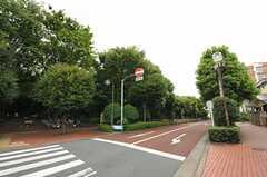シェアハウス周辺の公園。ドッグランもあります。(2012-09-10,共用部,ENVIRONMENT,1F)