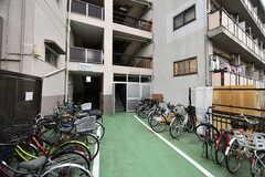 マンションの駐輪場。(2020-05-21,共用部,GARAGE,1F)