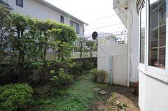 庭の様子。(2011-09-22,共用部,OTHER,1F)