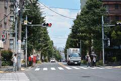 シェアハウス近くの通りの様子。(2019-08-09,共用部,ENVIRONMENT,1F)