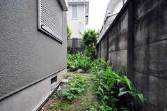 裏庭では、ハーブや植物も育てられます。(2010-06-09,周辺環境,ENTRANCE,1F)