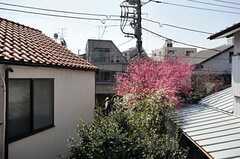 ベランダからはお隣の桜や梅の借景が楽しめます。(205号室)(2012-04-12,専有部,ROOM,2F)