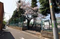 各線・江古田駅からシェアハウスへ向かう道の様子。(2012-04-12,共用部,ENVIRONMENT,1F)
