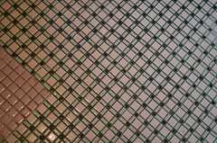 洗面台周辺のタイルの様子。(2014-03-24,共用部,OTHER,1F)
