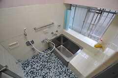 バスルームの様子。(2014-03-24,共用部,BATH,1F)