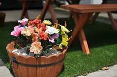 庭に飾られた花。(2014-07-17,共用部,OTHER,1F)