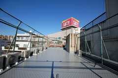 屋上の様子。(2009-01-05,共用部,OTHER,4F)